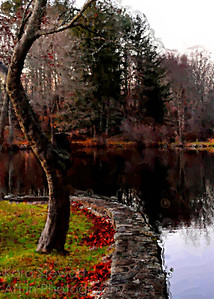 December 18, 2011  Bending Tree Pond Painting  I took this on Thanksgiving, actually. It is the pond at Dolce Norwalk (http://www.dolce-norwalk-hotel.com/?gclid=CKekg6ibjK0CFQ5T7AodQUtwpA . It wasn't a knock out photo but I liked the curves and the potential for color, so I experimented using Corel's Painter Essentials 4. This is the detailed watercolor setting, with some tweaks.