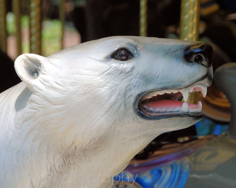 June 16, 2010<br /> <br /> Carousel Bear<br /> <br /> Trip to the NC Zoo with daughter and friend!