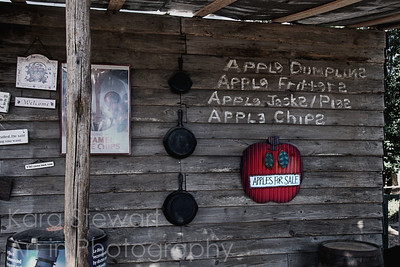 November 11, 2010  Apple House  Also a shot from the NC State Fair last month.  They had every kind of apple treat you can imagine here!    I am floored by all your comments on yesterday's shot.  It's been a really, really tough week here, so it was wonderful to read your comments.  I appreciate it so much.  Celebrating my daughter's 20th birthday today (it's actually tomorrow but celebrating today).  No longer a baby, no longer a little girl, no longer even a teenager.....  the days may go by slowly but the years pass quickly.  Hope you all enjoy your day and remember those who have served.