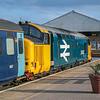 37407 at Great Yarmouth