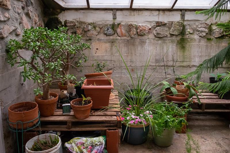 greenhouse-3380
