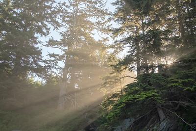 BC Road Trip Top 25
