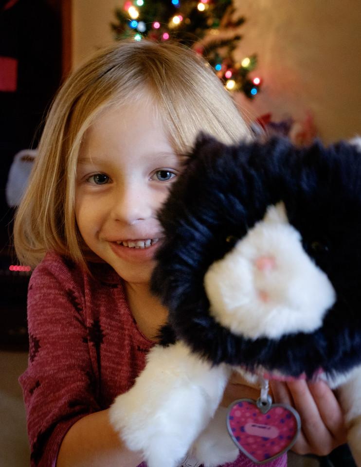 quinn+toy_kitten-2878
