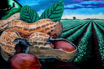 Peanut Mural Enterprise AL_2099