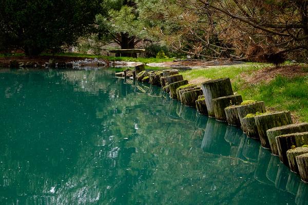 Japanese Stroll Garden - April 6