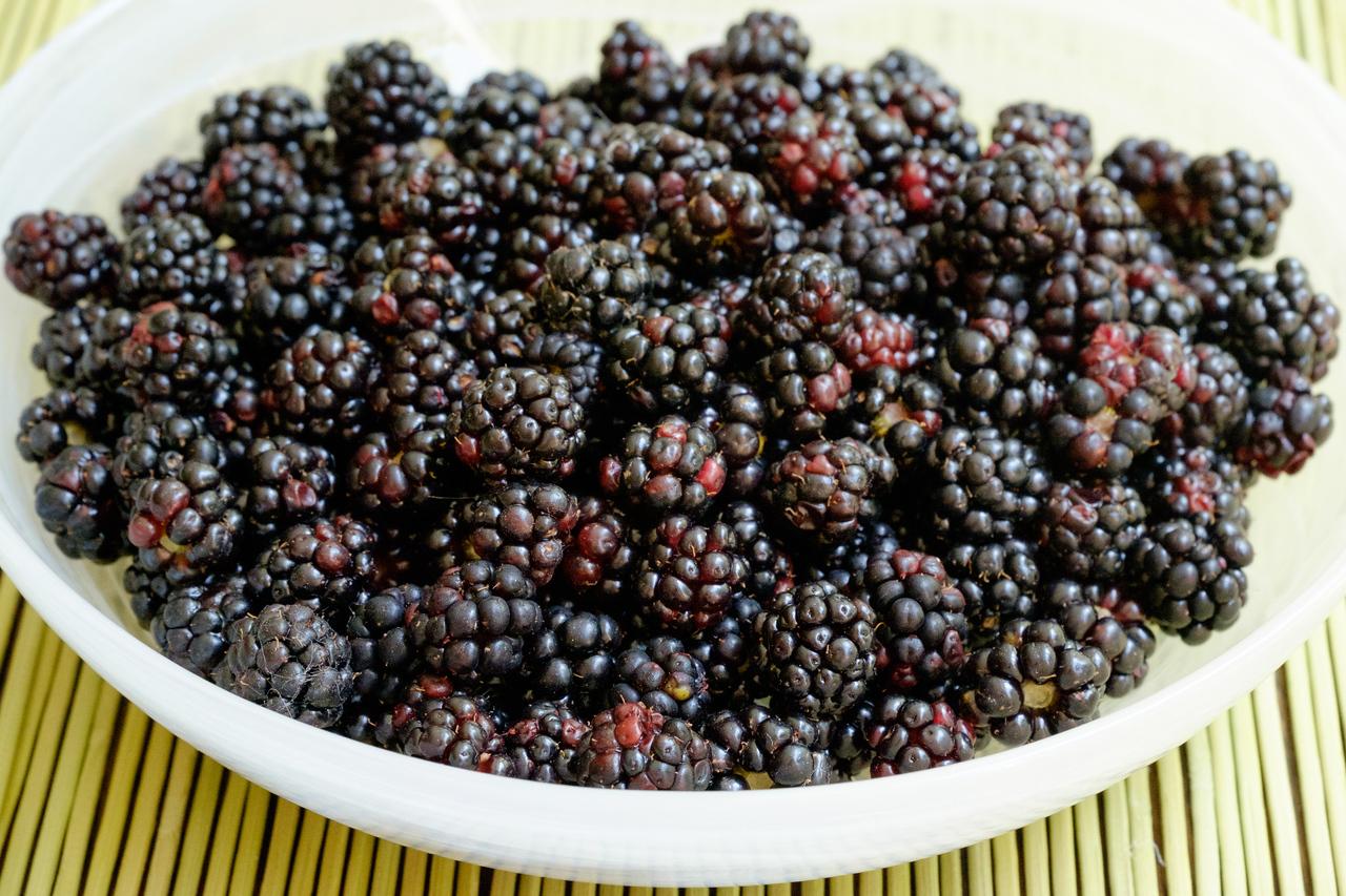 blackberries-0574