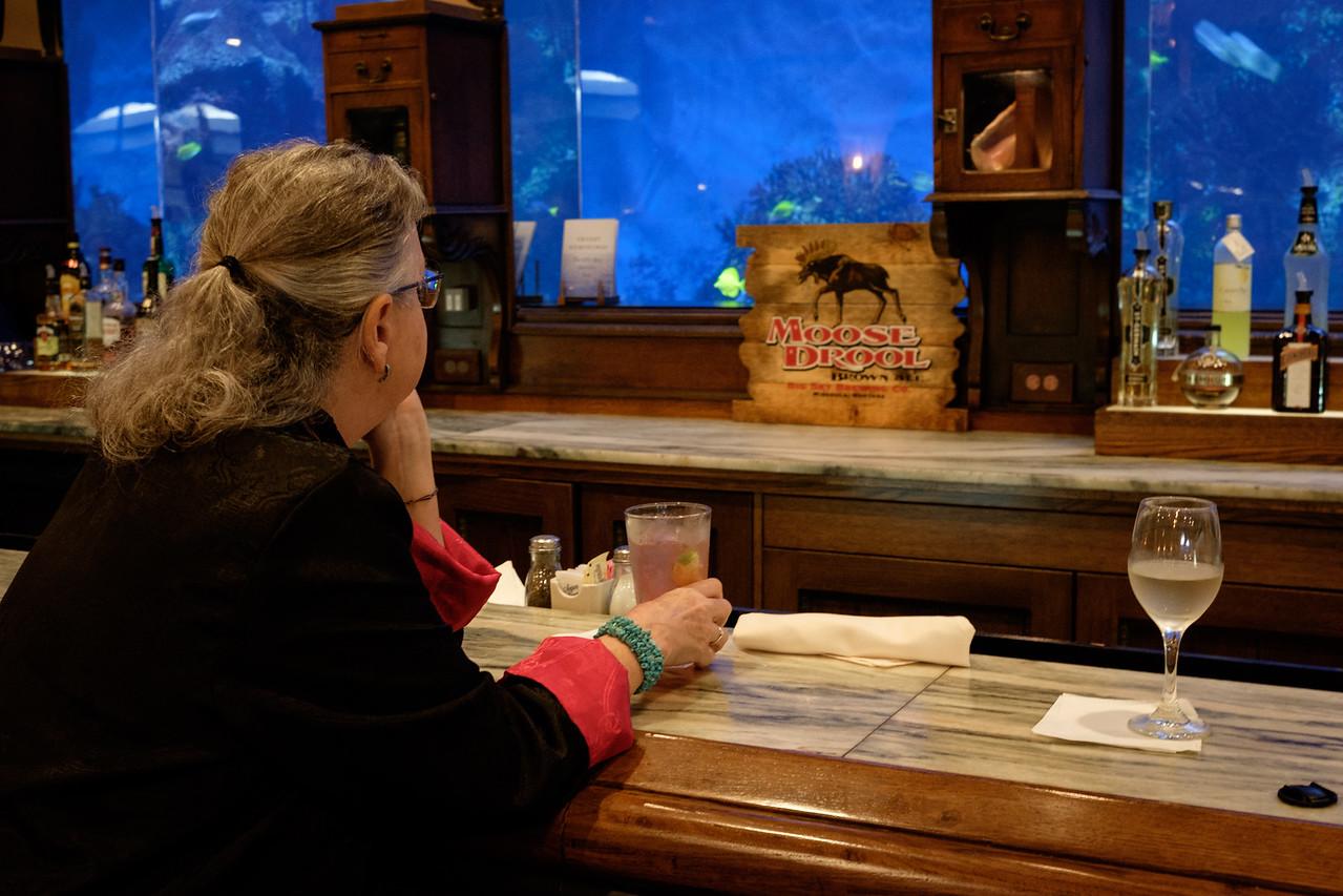 Watching the aquarium fish at Hemingways.
