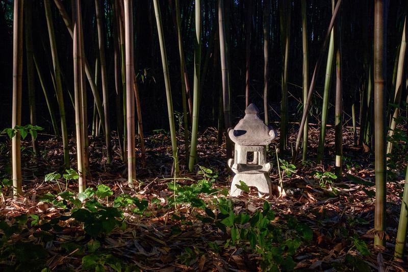 bamboo_garden-0390
