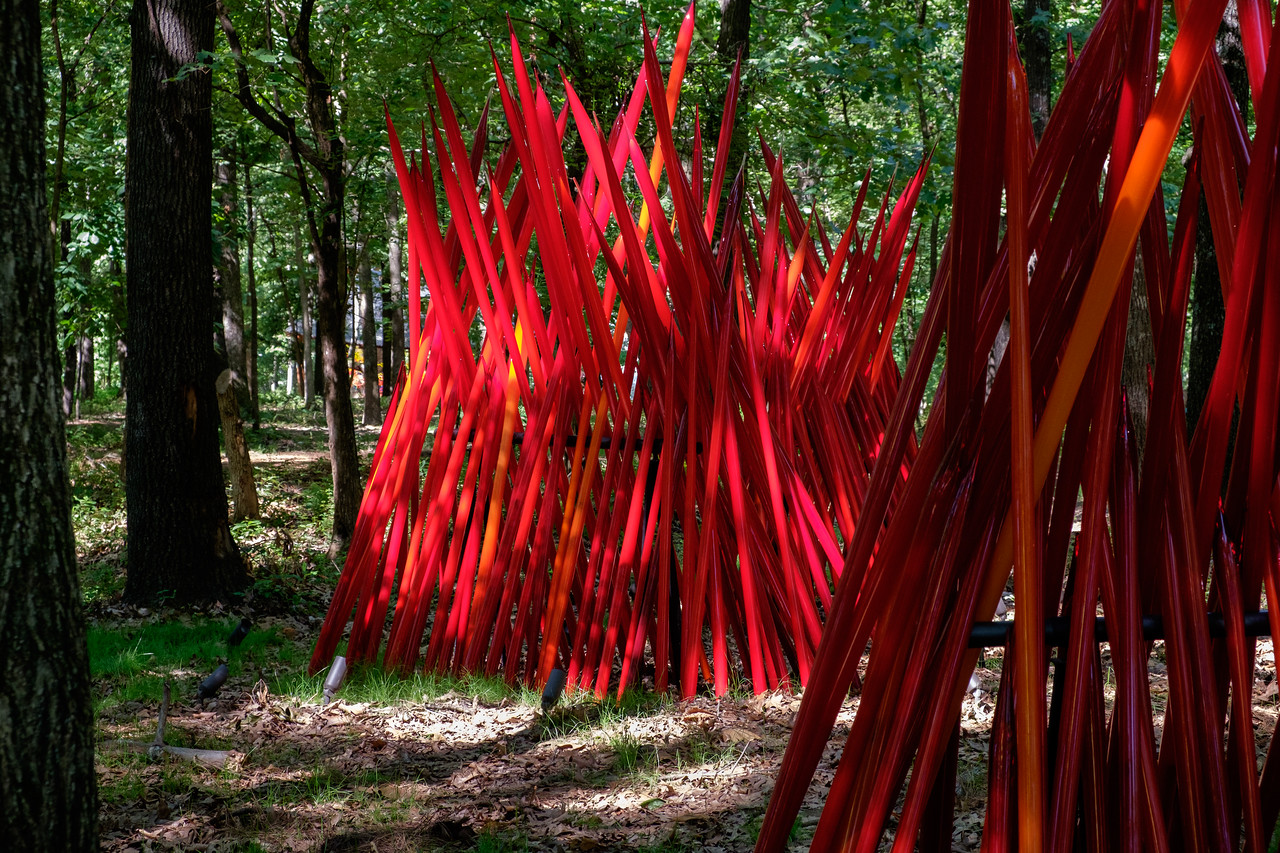chihuly_red_reeds-0439