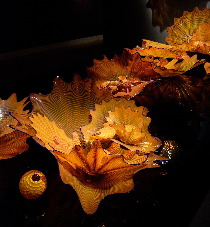 chihuly_glass-0459