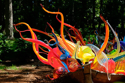 June 21 Dale Chihuly Exhibit