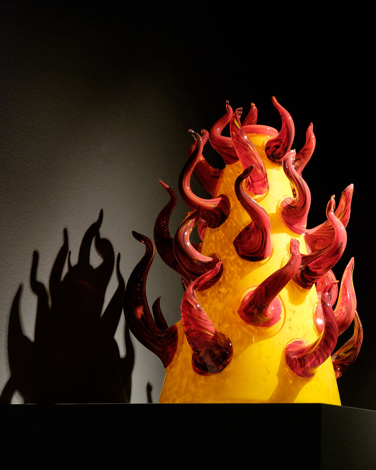 chihuly_glass-0463