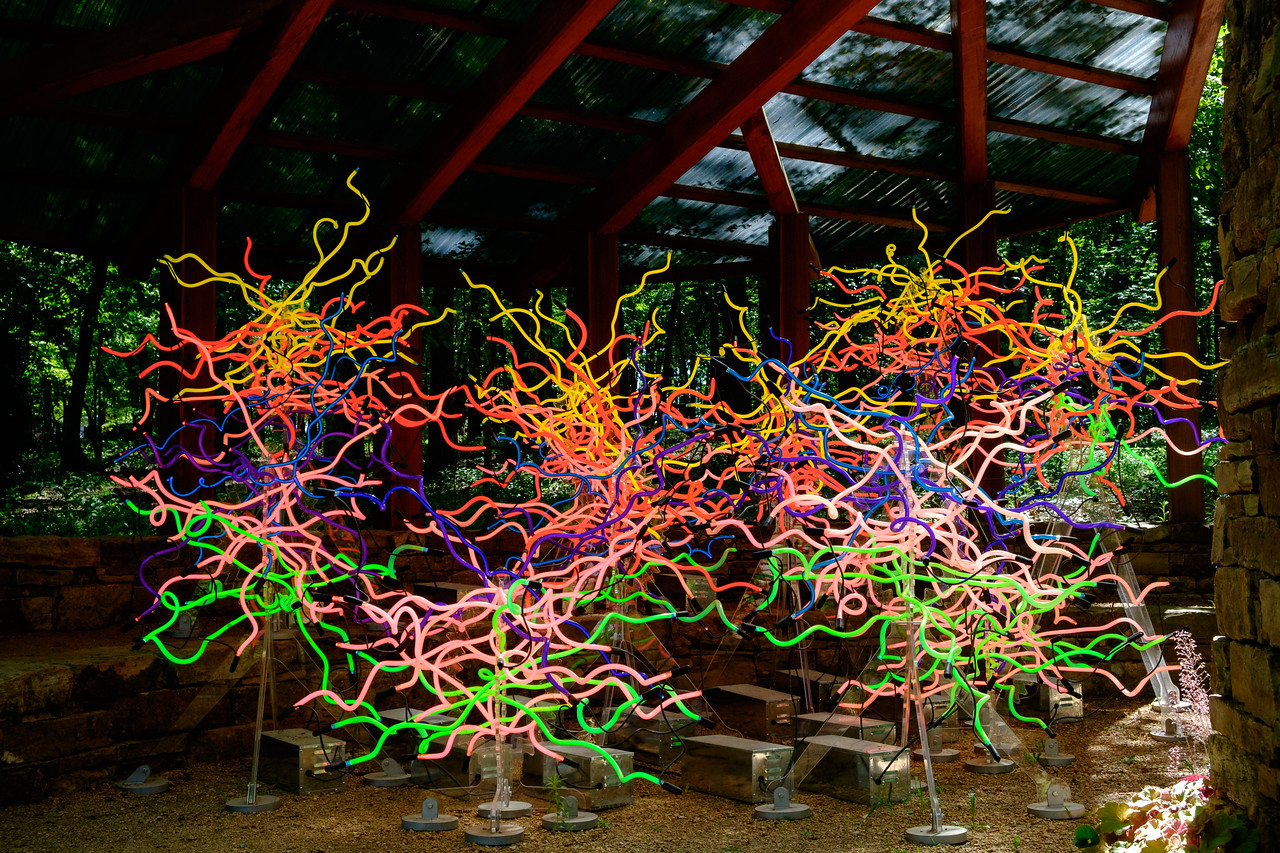 chihuly_neon-0428