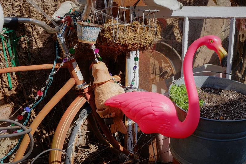 flamingo+bike-3257