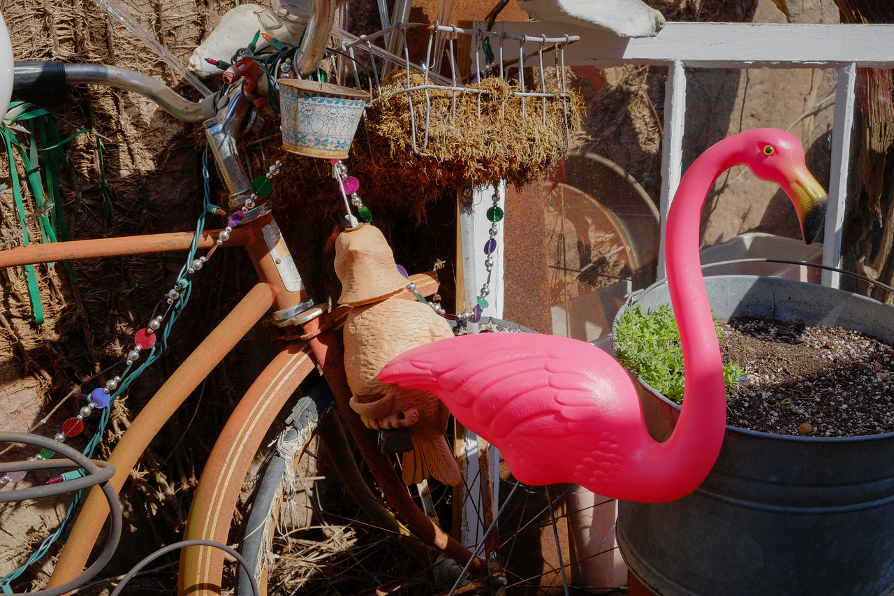 flamingo+bike-3257