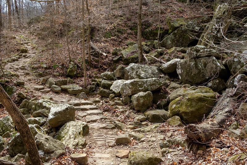 Trail back from Eden Falls. Lost Valley State Park, Arkansas. From RAW shot at DR-400.