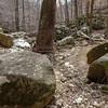 rocks+trees-3238