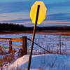 Sunset Stop Sign_9902