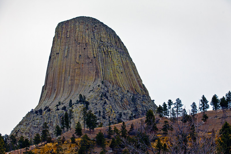 Grey Day Superb Colors Devils Tower National Monument WY_9471