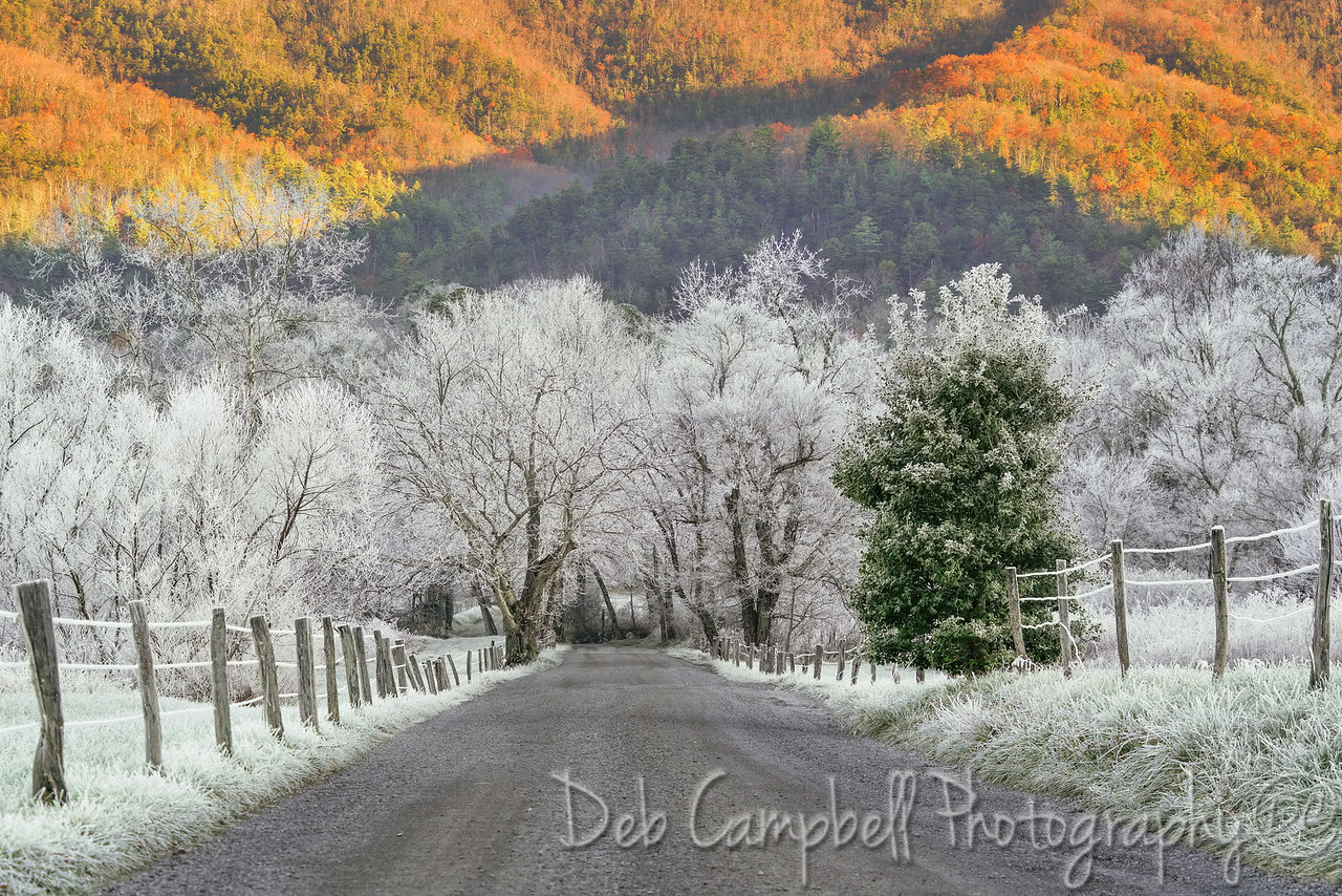 Fall on the Mountain, Frost in the Valley