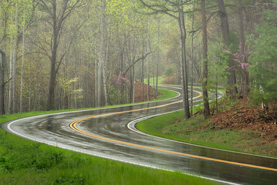Springtime on Foothills Parkway-4