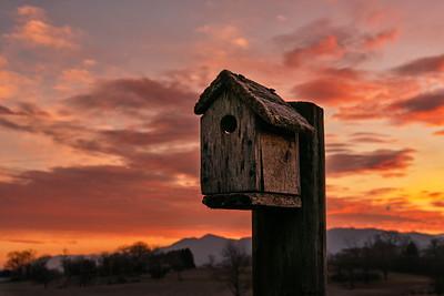 Birdhouse at Sunrise