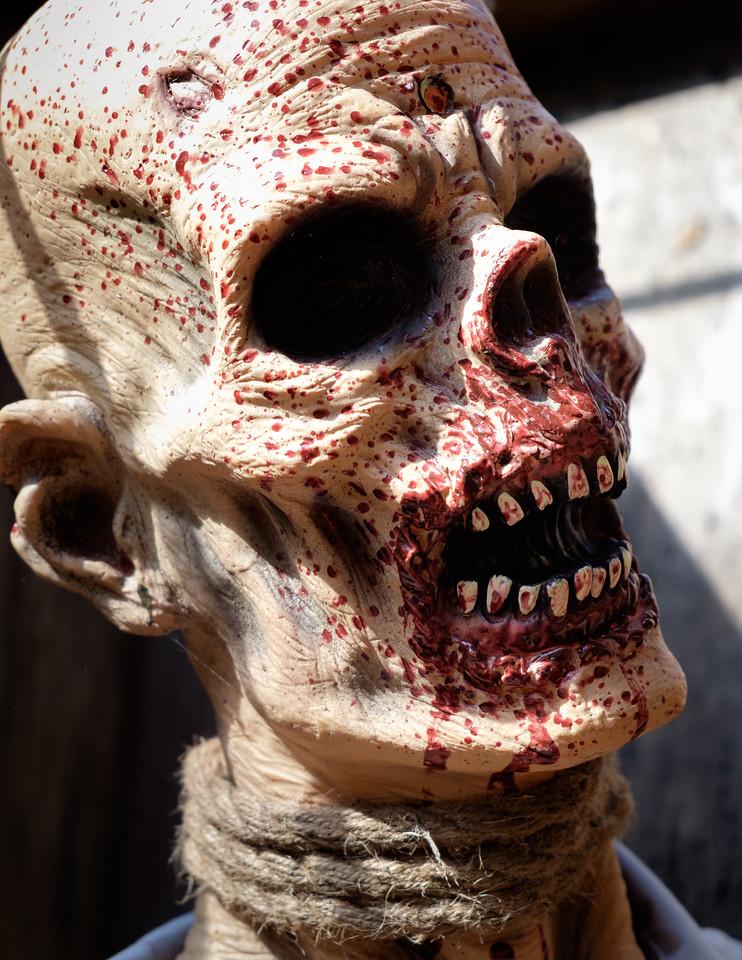 splattered_skull-2614