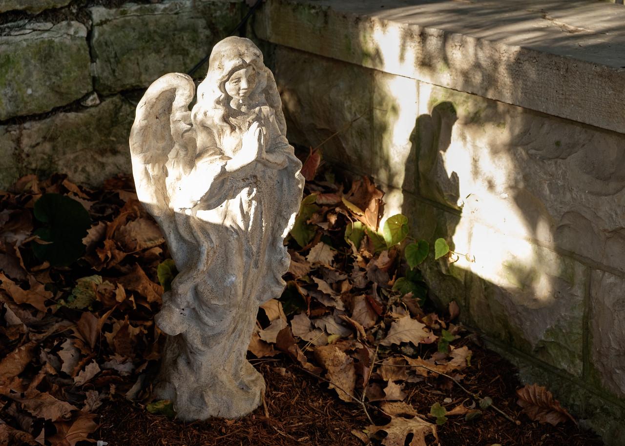 eureka+angel-2749