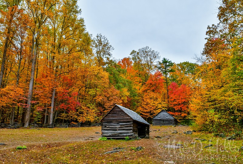 Autumn At The Bales Homestead