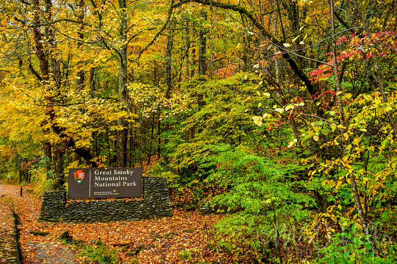 Smokies Fall Entrance