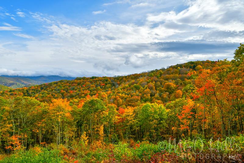 Fall Ridge