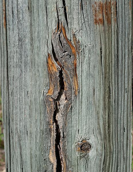 Wood cut abstract - 3