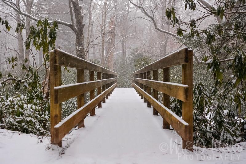 Winter Hike At Alum