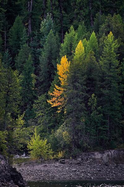 Beginning of Autumn
