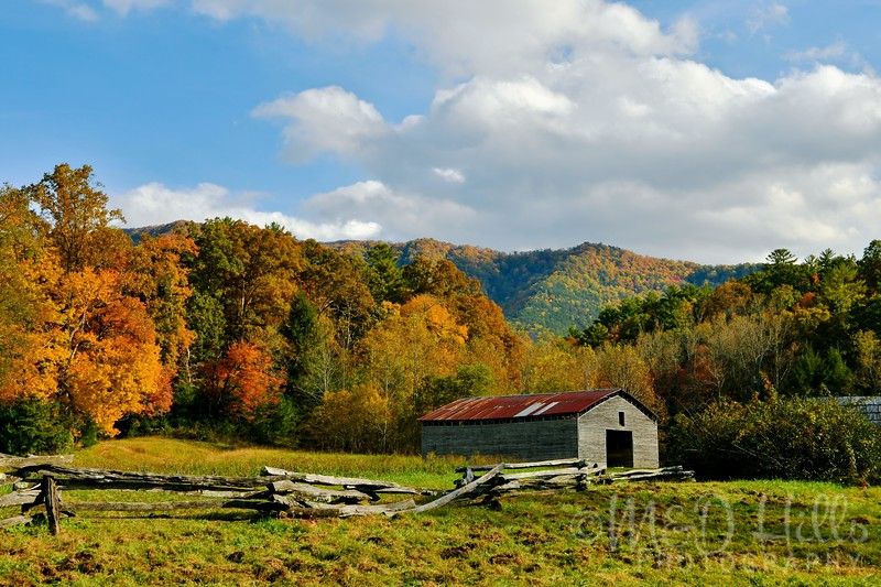 Autumn At The Lawson Barn