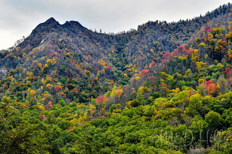 Autumn At Chimney Tops