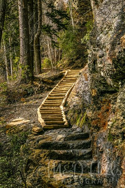 Trails Forever