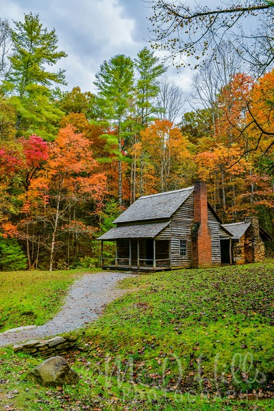 Autumn At Henry Whitehead Cabin