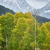 Fall and Winter in the Tetons