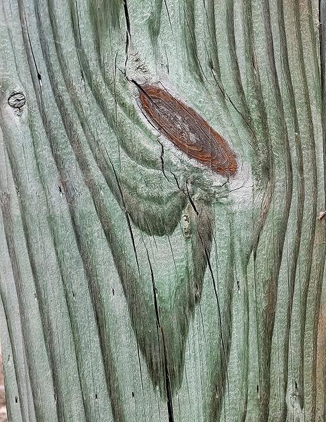 Wood cut abstract - 11