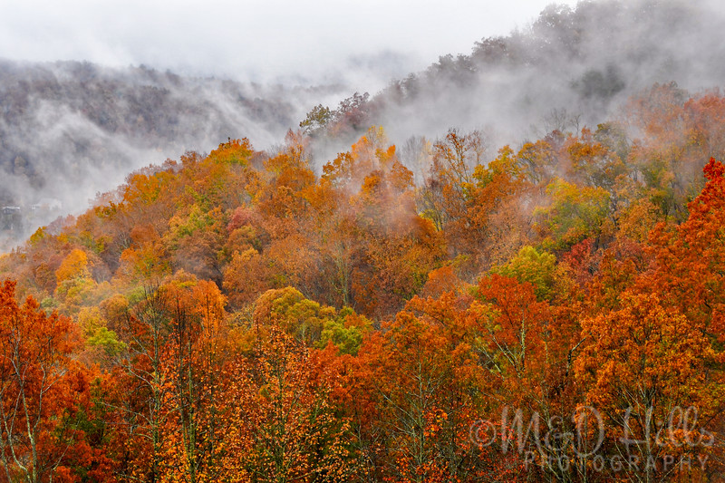 The Smokies In Autumn