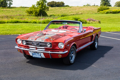 1966Shelby