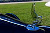 2010. A Packard in 1937. Probably the best hood ornament I've ever seen.