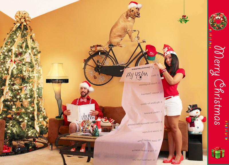 Christmas 2012 Wish List