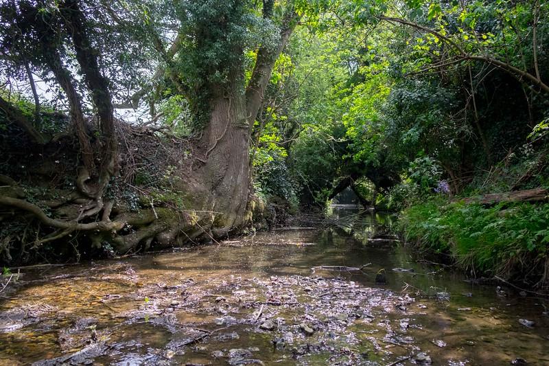 River Quin