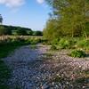 River Mimram - springs