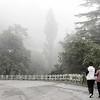 Capileira mist
