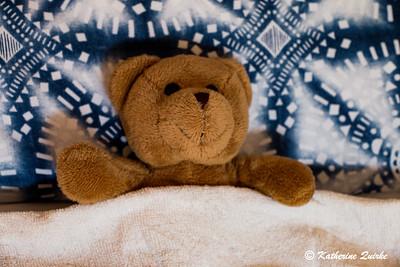 Clarence Teddy Sleeping In