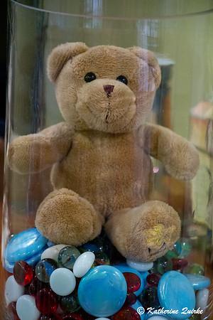 Teddy in the Vase