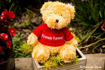 Friendship Teddy
